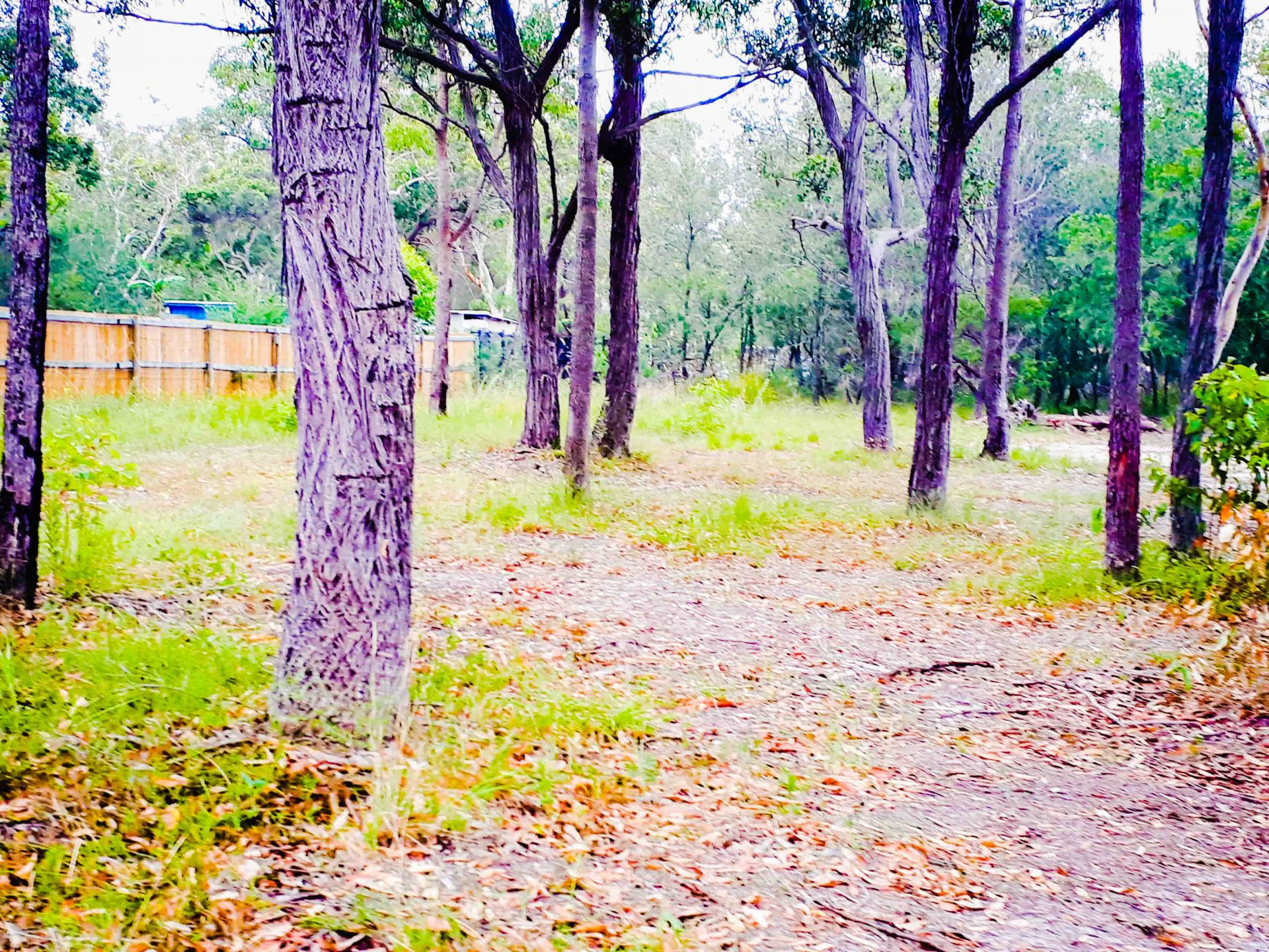 Wyee Real Estate: Big Bush Block For Sale ...Be Quick!..