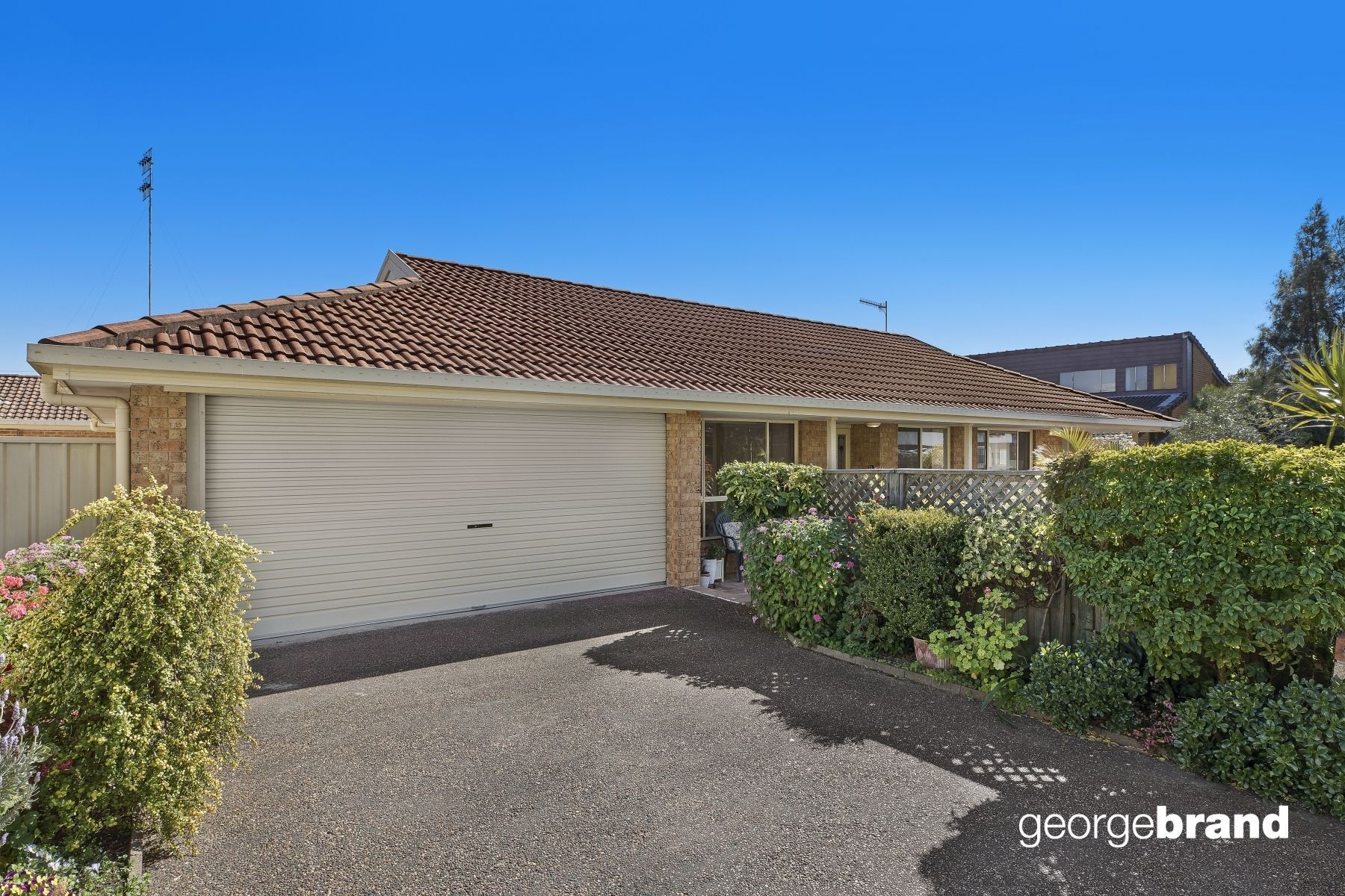 The Entrance Real Estate: SINGLE LEVEL TORRENS TITLE VILLA