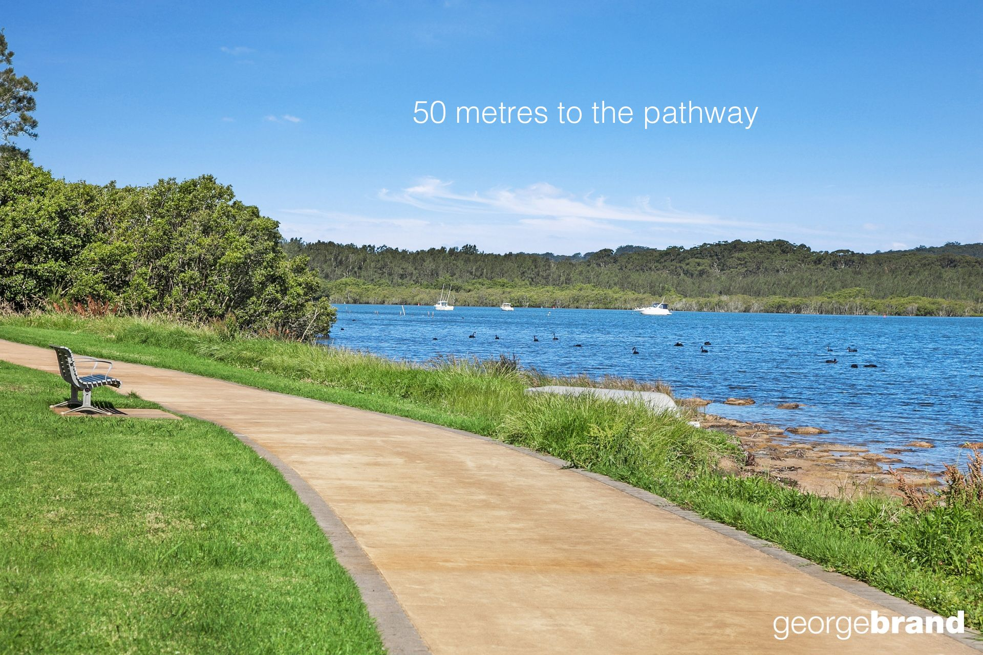50 Metres to the Foreshore