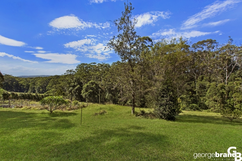 Macmasters Beach Real Estate: 12 SUN DRENCHED ACRES